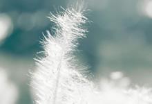 叱咤风云呼风唤雨的反义词,''呼风唤雨''的反义词是什么